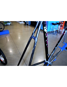 Rueda trasera SPINERGY STHEAL Carbono